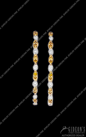 Hidalgo Hoop Earrings HDE27